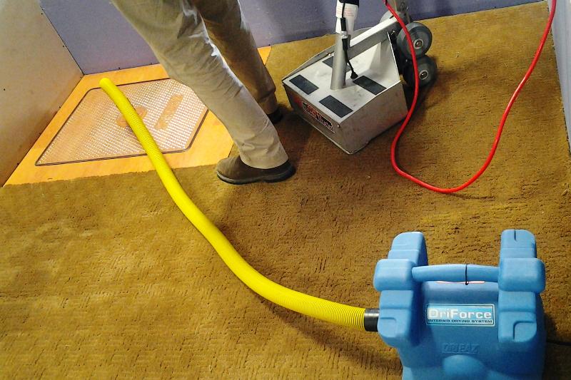 Carpet drying demonstration